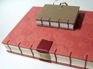Buku perbandingan