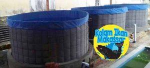 Kolam Ikan Makassar - Jual kolam terpal bioflok, bibit ikan lele, nila, bawal, dan beli hasil panen