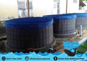 Kolam Ikan Makassar - Jual kolam terpal bioflok, bibit ikan lele, nila, bawal, dan beli hasil panen 4